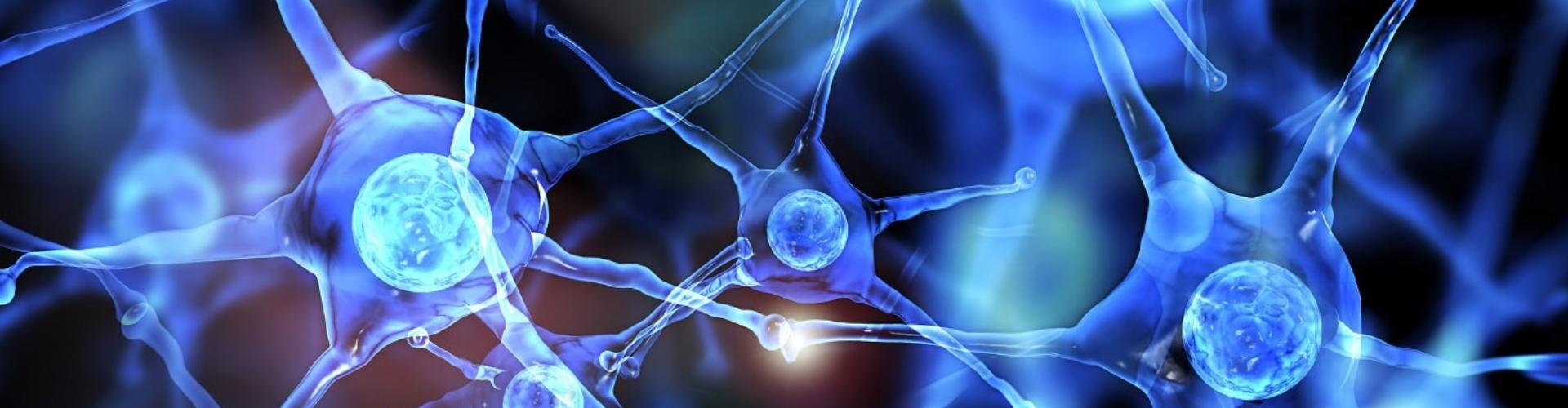 Neurologia Igea